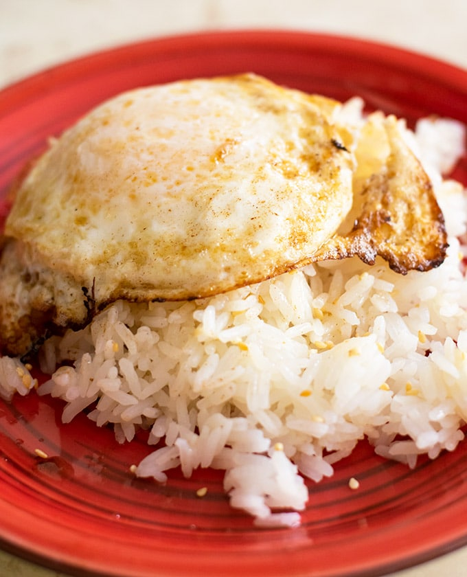 fried egg and rice