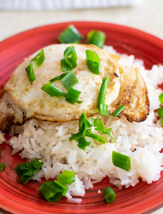 fried egg over rice garnished with chopped green onions