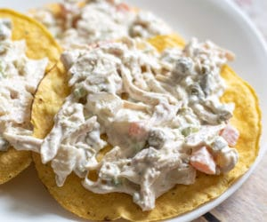 ensalada de pollo on tostadas on a white plate